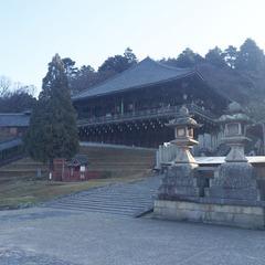 【観光ガイド付◆東大寺散策コース】2名様〜催行!初めての方も歓迎♪奈良観光の王道巡り