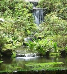 【四季の会席グルメプラン☆】花水庭おおや・スタンダードスタイル♪