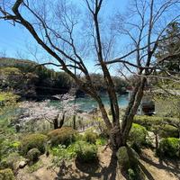 素泊まりプラン ★お部屋から豊川を眺め自然の山を感じ癒しの空間を演出します