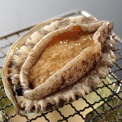 【夕食グレードUP】人気お料理コースの焼物が熱海湾の鮑の踊り焼きにグレードUP「熱海満喫プラン」