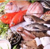 伊豆の海を食べよう!お刺身特盛り、地元魚市場直送の鮮魚、伊勢海老など