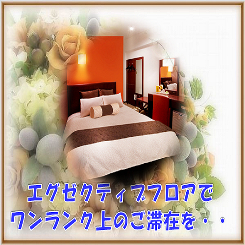 Executive Semi-Double Room for Single Use with Breakfast