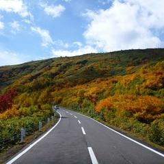 【紅葉】の見ごろは9月下旬から10月中旬★八幡平アスピーテラインまで車で40分【2食付スタンダード】