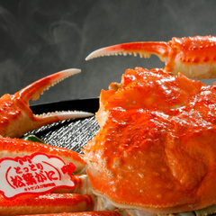 【蟹取県の境港直送! ブランドタグ付き松葉蟹が1人1杯楽しめる♪】蟹三昧「匠」会席