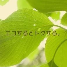 【エコ】清掃なし・タオル交換のみ 【2泊以上限定】