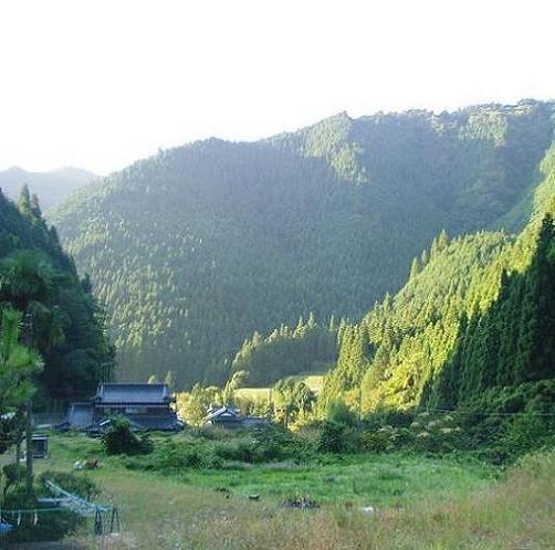 スマートプラン(素泊り・ビジネス等)