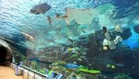 【朝食付】名古屋港水族館特別優待割引券付きプラン