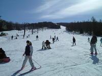 【湯の丸高原スキー場リフト券付】スキー&スノボ1泊2食付バイキングプラン