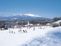 【佐久スキーガーデン パラダリフト券付】スキー&スノボ1泊2食付バイキングプラン