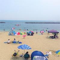 夏休み♪ビーチへ2分!イン前アウト後の駐車OKで〜たっぷり海水浴【金目鯛&アワビ・海水浴・観劇無】