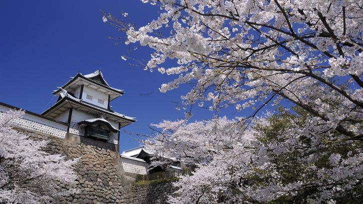 【春との出会い】絶好の立地だから兼六園の早朝お散歩やランニングで午前中を満喫 朝食付