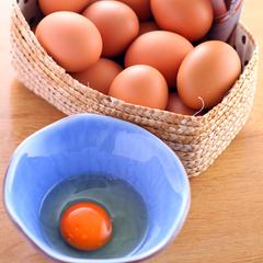 【朝食・夕食2食付きプラン】 充実の朝食+メニューの中から選べる夕食の2食が付いたお得なグルメプラン