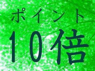 【ポイント10倍】出張・観光♪応援プラン