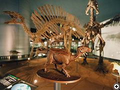 【楽天限定】来て!見て!勝山・恐竜博物館入場券付♪《朝食付》テーマパーク周辺