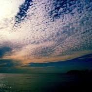【秋】のDX(デラックス)プラン 波のきらめき膳DX  豪華7種盛りの舟盛と伊勢海老・鮑姿焼き!