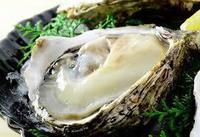 美味!海の幸!!ぷりっぷり♪の秋田の岩牡蠣を満喫!!1泊2食☆