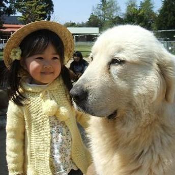 ■気軽に動物と触れ合える■大山トムソーヤ牧場
