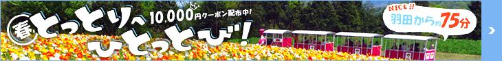 とっとりへひとっとび!■航空券+宿で10,000円クーポン配布中■