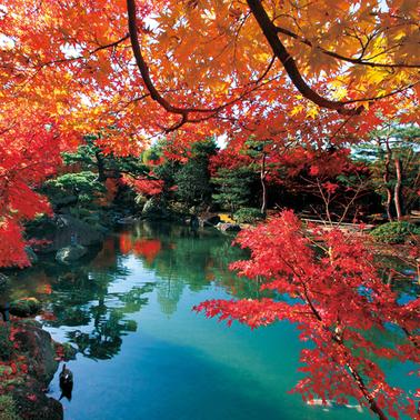 牡丹の里 由志園の紅葉イメージ