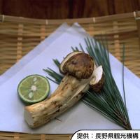 【期間限定】秋の味覚『松茸』を味わう お気軽に味わう松茸基本コース 〜日本料理〜