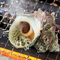 【50歳以上×蟹×海鮮浜焼き】50歳以上で10%OFF♪蟹と海鮮浜焼き食べ放題【房総☆春の旅】
