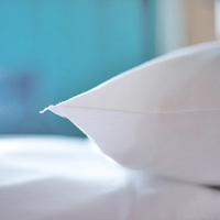 【お掃除不要でeco贔屓(エコヒイキ)朝食付き】2連泊以上はこちらのプランがお得!