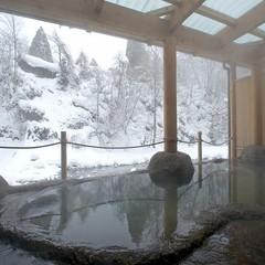 ◎【ポイント10倍】日本一深い自噴岩風呂♪源泉純度100%掛流し!楽天特選お手頃膳♪「楽天限定」