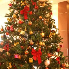 【スペシャルXmas】心高鳴る、加賀創作イタリアンフルコース☆リゾートで贅沢に過ごすクリスマス