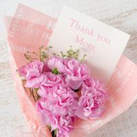 【母の日プラン】☆お母様に日頃の感謝を伝えよう☆ご夕食はお部屋または個室でお約束♪さらに特典付き!