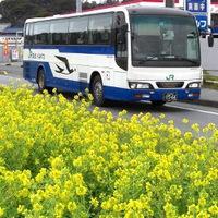 【東京⇔ホテル前 往復送迎バス付き】楽々アクセスで浜焼きバイキングを食べに行こう!