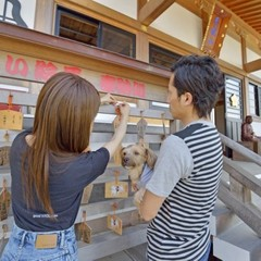 《わんちゃん健康祈願》 愛犬の元気を祈って♪ 花の寺『能蔵院』でわんちゃん厄祓いプラン