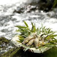 夏の美味を味わう「鱧と鮎の会席」宿泊プラン