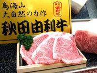 【洋食・ブランド和牛】秋田が誇る和牛を堪能♪【由利牛ステーキ+ハーフコースプラン】