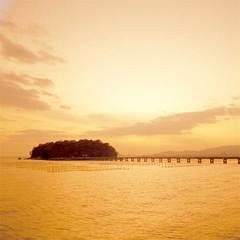 【学生さん×平日限定】1泊二食+海を望む天然温泉+6大特典込みで@1万円〜!冬・春休み旅にコスパ◎♪