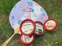 【期間限定】和室に泊まってアイスを食べよう!家族でお得にハーゲンダッツアイス付きプラン!!