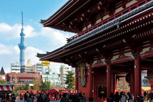 【1階建てバス】下町ここイチ(浅草散策)/新宿・池袋発