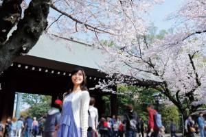 東京桜めぐりとホテルグランドパレスのランチブッフェ