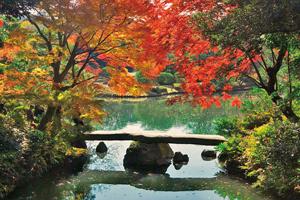 秋色の街めぐりと東京スカイツリー®