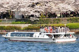 東京を彩る桜名所と松阪牛の焼肉ランチ