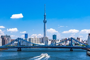 魅力凝縮!TOKYOてんこ盛り(東京タワー&東京スカイツリー®)