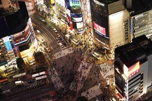 東京発着/はとバス