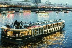 夜桜の隅田川花見船と千鳥ヶ淵の桜