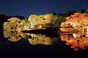 六義園 紅葉と大名庭園のライトアップと寿司食べ放題