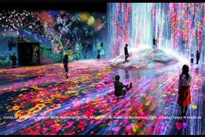 巨大なデジタルアート空間「チームラボ ボーダレス」とヒルトン東京ベイ