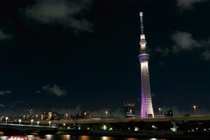 シンフォニーサンセットクルーズと夜景の東京スカイツリー®/A:フランス料理