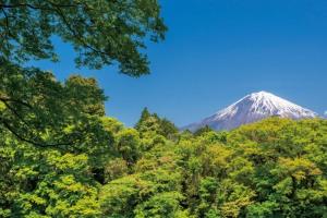 富士山麓周遊とスバルライン