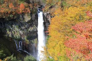 紅葉奏でる世界遺産日光東照宮と華厳の滝