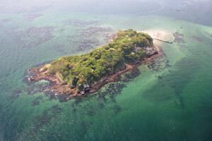 横須賀軍港めぐりと無人島「猿島」探検ツアー