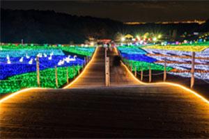 東京ドイツ村・ウィンターイルミネーションと川崎工場夜景!三井アウトレットパーク木更津で年末年始のお買い物たっぷり2時間 海ほたるからの絶景を楽しむバスツアー