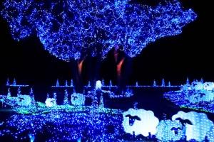 東京ドイツ村&マザー牧場の欲張りWイルミネーション鑑賞+三井アウトレットパーク木更津でショッピング【新宿 出発】